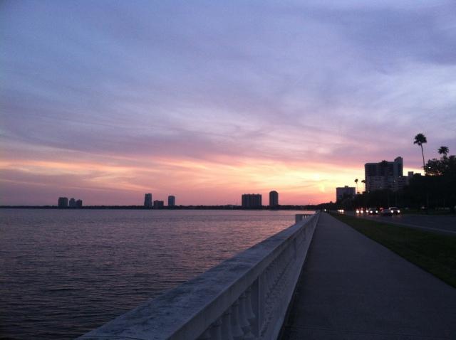 tampa florida sunset