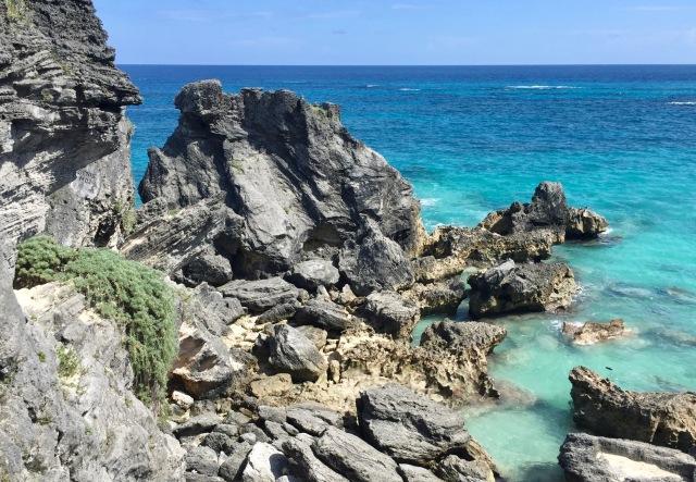 bermuda beach.jpg