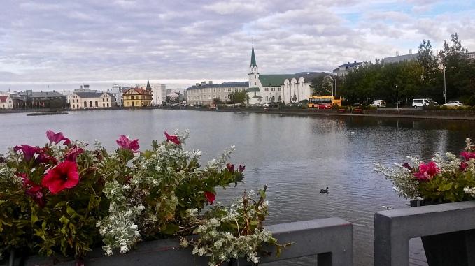 Iceland park travel