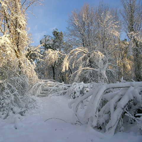 usa winter travel