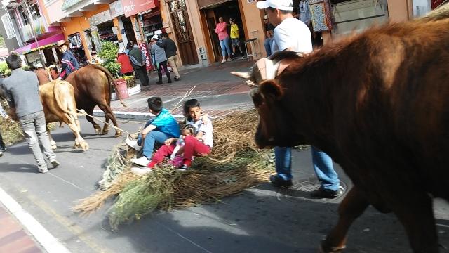 local culture ecuador