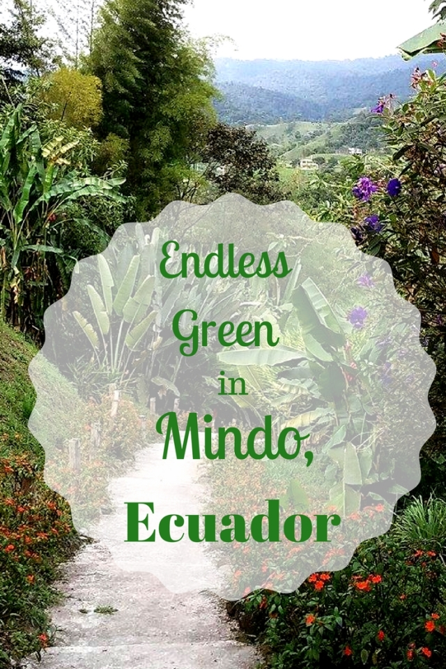 Endless Green in mindo ecuador