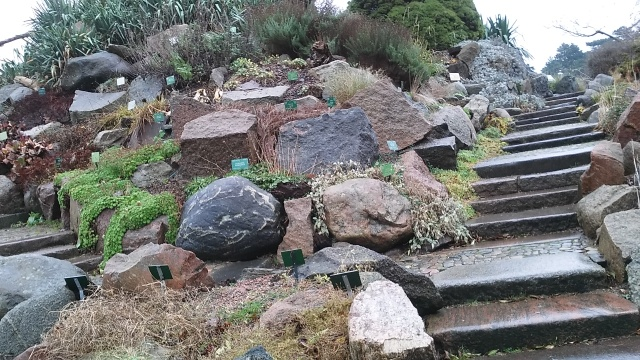 copenhagen denmark travel botanic garden