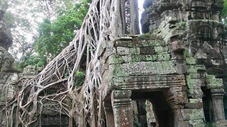 Ta Prohmimage cambodia