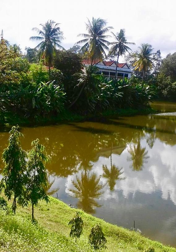 Siem Reap Image Asia