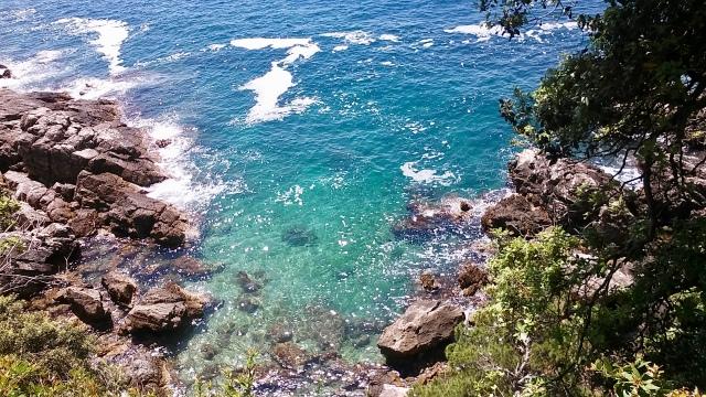 lokrum island croatia travel
