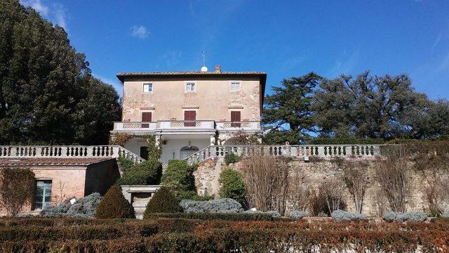 vineyard Tuscany Italy wine travel