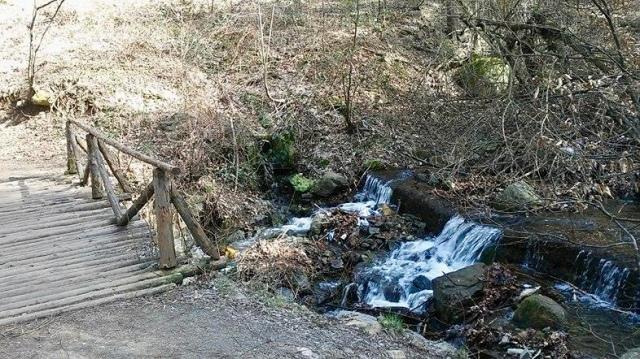 sofia Bulgaria travel tips Eastern Europe vitosha mountain