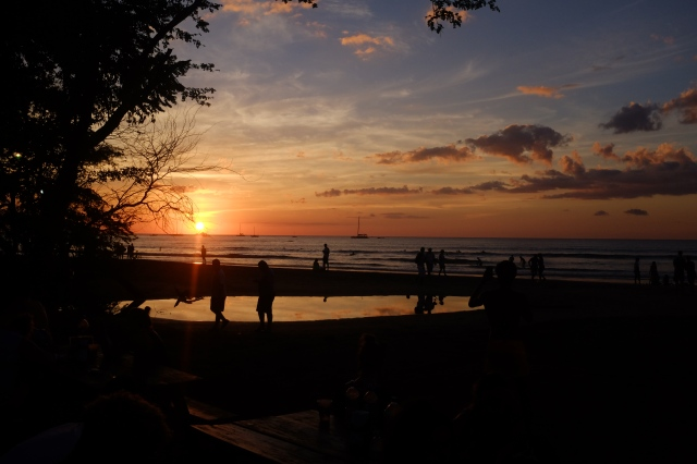 dreamsea surf camp Costa Rica sunset nature