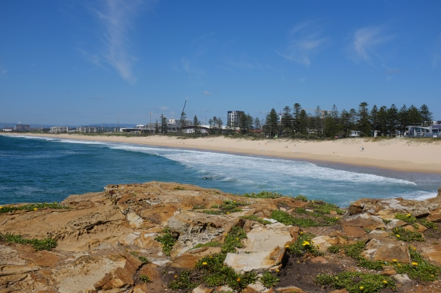 australia wollongong travel beach