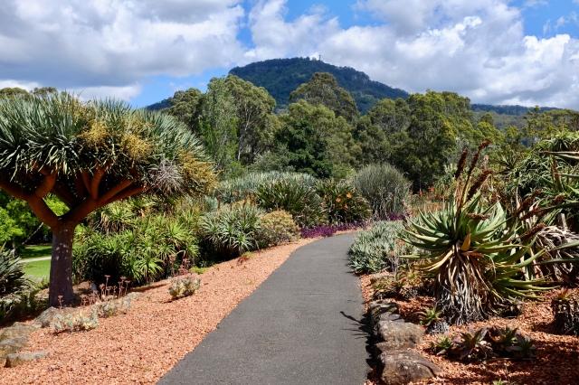 australia wollongong travel botanic garden