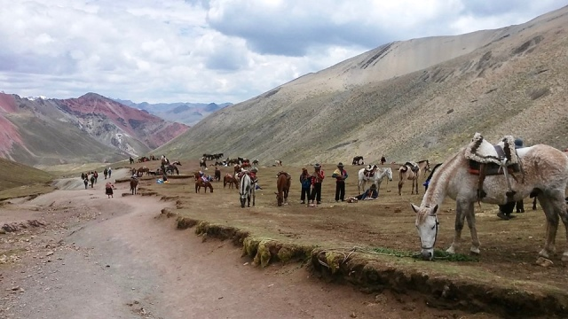 rainbow mountain Peru horses hiking