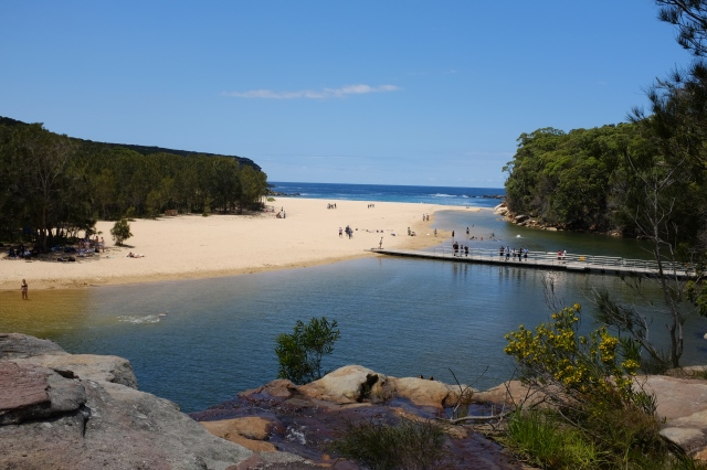 travel Australia royal national park wattamolla