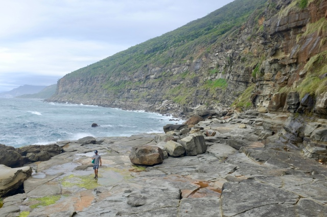 travel NSW Australia royal national park