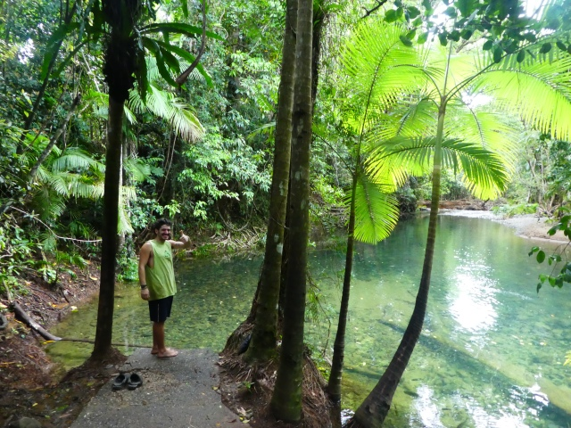 budget travel Australia cape tribulation