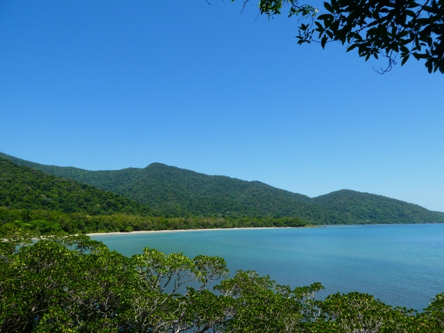Daintree rainforest travel
