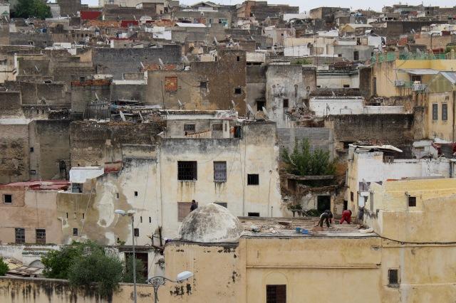 morocco-fez-culture-shock.jpg