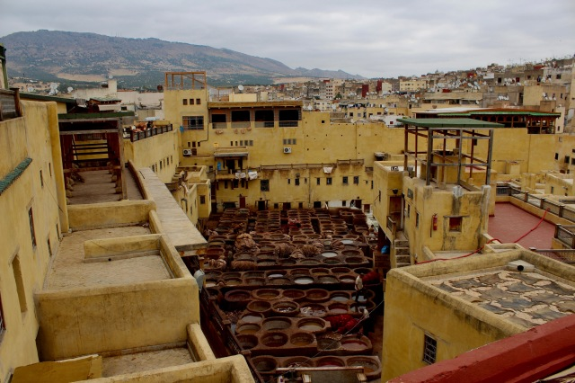 travel morocco-fez-tannery