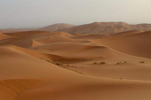 dunes-soft