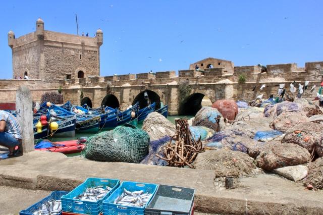essaouira, morocco fish market
