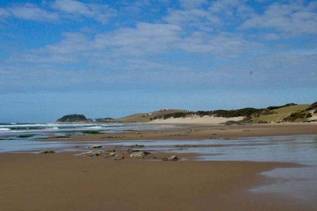 beach wild coast